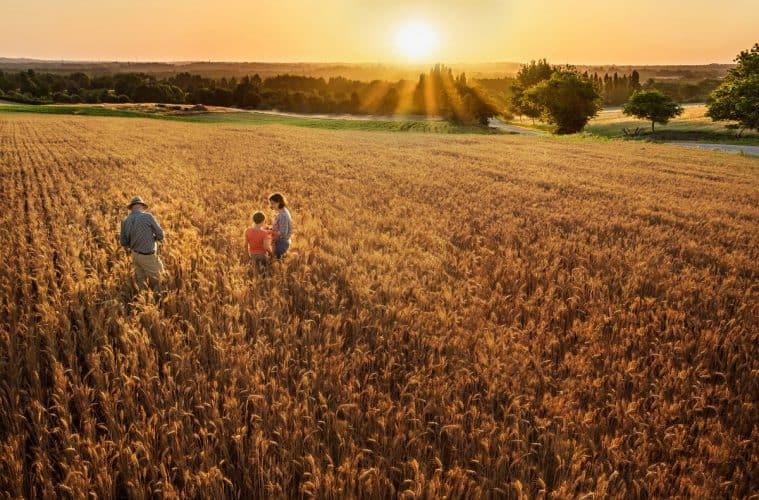 Sucessão familiar na fazenda