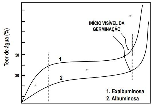 gráfico com teor de água que as sementes de milho (albuminosas) e de soja ou feijão (exalbuminosas) precisam ter durante a germinação para emissão da radícula