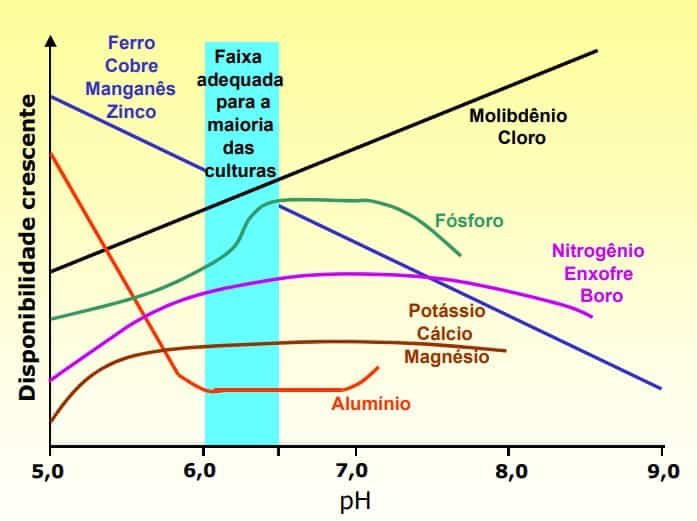 gráfico com disponibilidade crescente e pH do CTC do solo