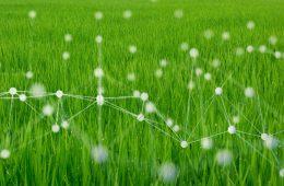 fazenda inteligente