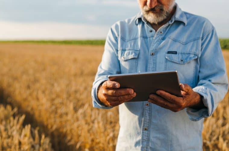 gestão agrícola