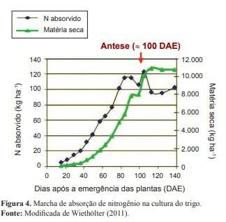 gráfico de marcha de absorção de nitrogênio na cultura do trigo.