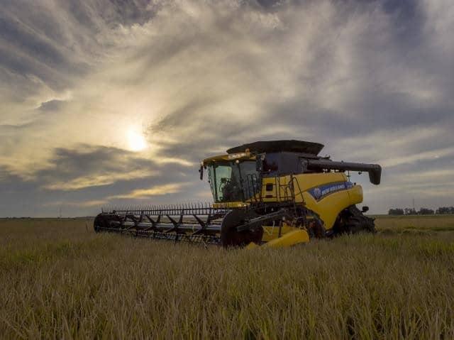 foto de colheitadeira CR 7.90 arrozeira - colheita mecanizada do arroz