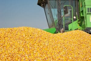 aumento da produtividade rural