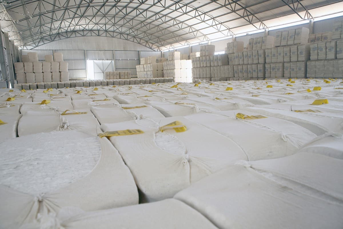 armazenamento do algodão
