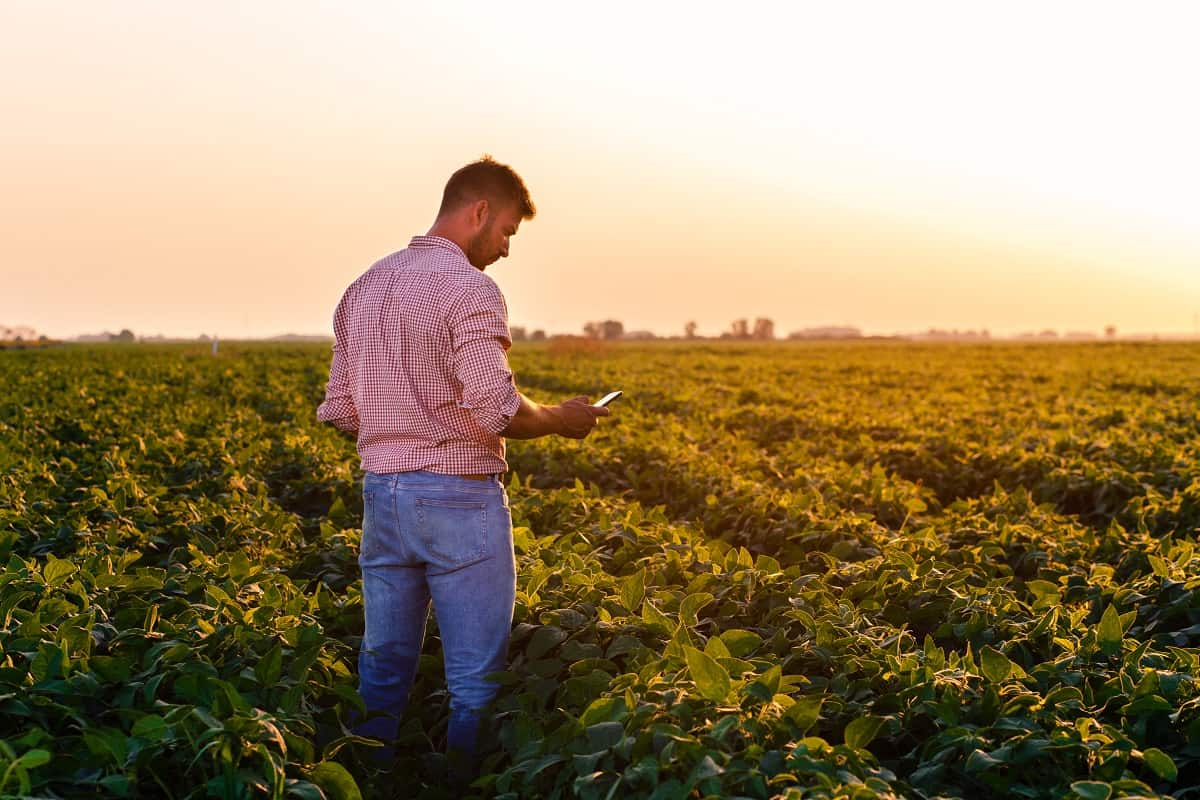 gestão do agronegócio