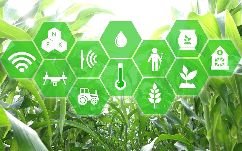 internet das coisas na agricultura