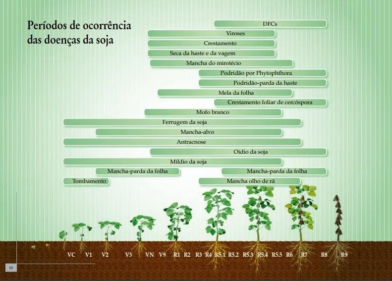 infográfico de períodos de ocorrência das doenças da soja - aplicação de fungicidas na soja