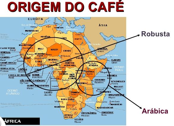 imagem de um mapa que mostra a origem do café robusta e arábica na África.