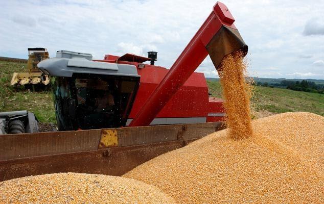 foto de colheitadeira de milho despejando grãos em caminhão
