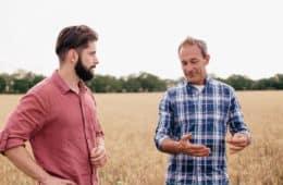 contratação de consultor agrícola