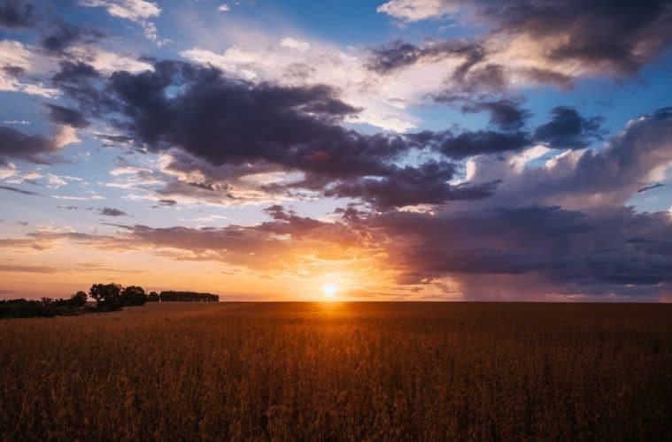 fenômenos meteorológicos na agricultura