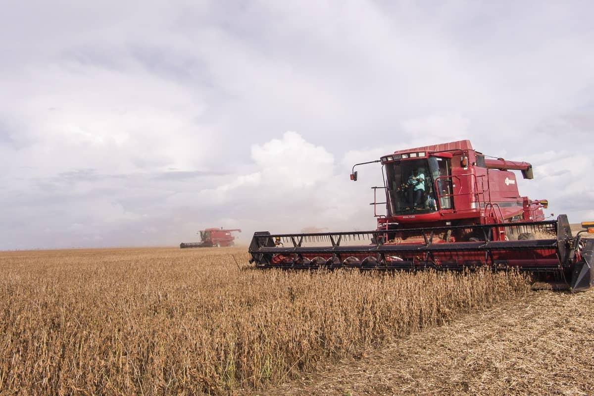 indicadores do desempenho da colheita de grãos
