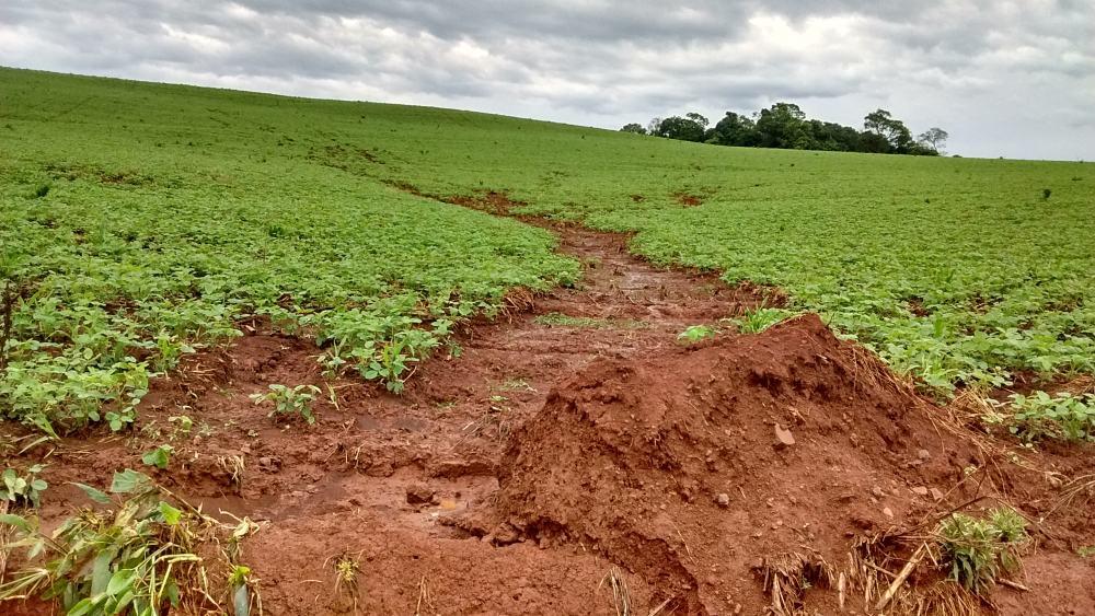 foto de erosão do solo ocasionada pelo excesso de chuva e não adoção de práticas conservacionistas do solo
