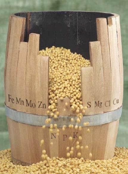foto de um barril de madeira com as siglas dos nutrientes  e no meio onde estão N, P e K tem uma abertura saindo grãos de soja e espalhando para fora - Lei do mínimo para a produção vegetal