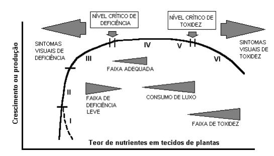 gráfico com relação entre disponibilidade de nutrientes e produção de plantas