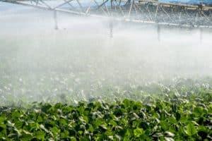 tipos de irrigação na agricultura