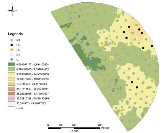 Mapa de variabilidade espacial da maturação dos frutos e uma área de produção de café com pivô central em Minas Gerais