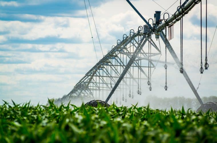 irrigação por aspersão