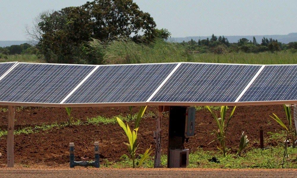 painéis solares ao lado de uma lavoura