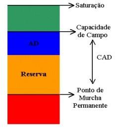 Representação da capacidade de água armazenada no solo