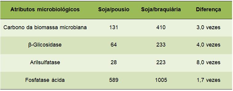 tabela com visão microbiológica do solo, além do excesso e falta de nutrientes