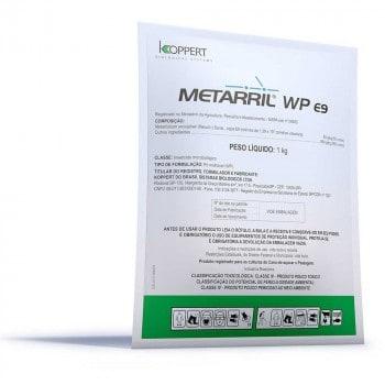 Bioproduto à base de Metarhizium anisopliae