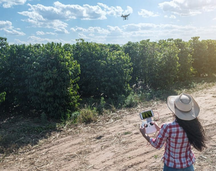 drones na pulverização do cafeeiro