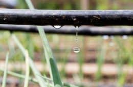 irrigacao por drip protection