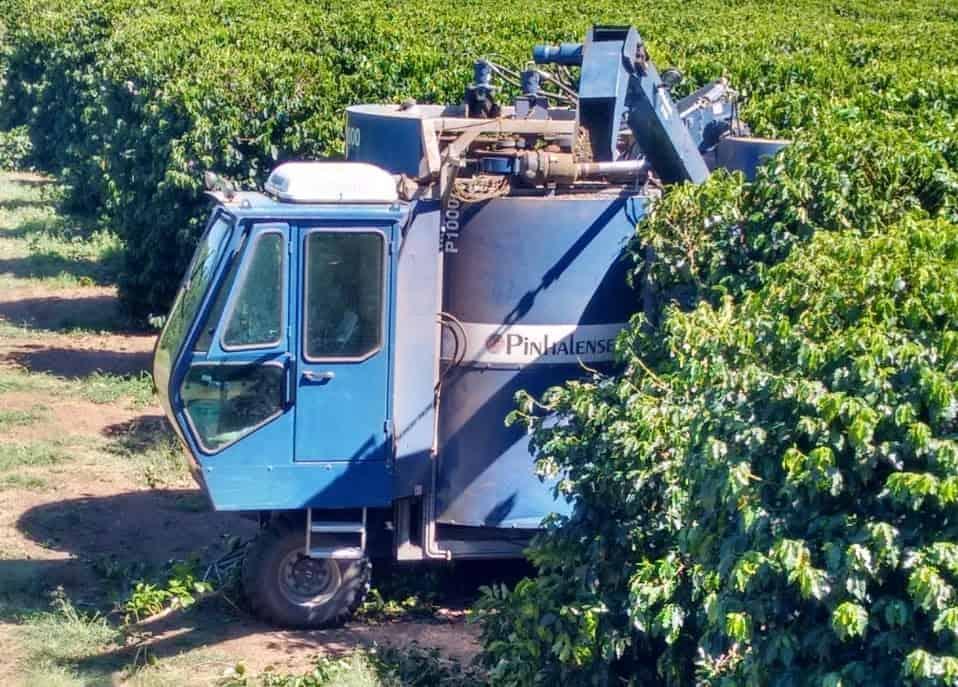 máquina azul e colheita mecanizada em área de produção de café no oeste da Bahia