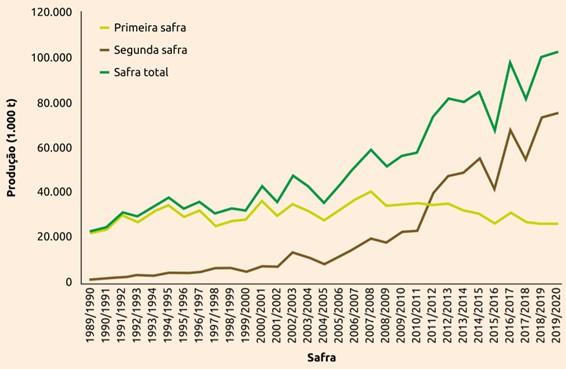 gráfico de evolução da produção na primeira e segunda safra de milho no Brasil, 1989/1990 a 2019/2020