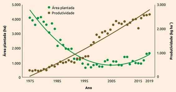 gráfico que mostra que entre 1976 e 2020, a produção de algodão aumentou de 0,6 milhão de toneladas para 2,5 milhões de toneladas de fibra e a área plantada foi reduzida de 4,1 milhões de hectares para 1,7 milhão de hectares
