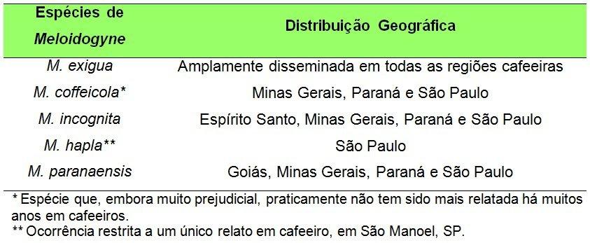 tabela com principais espécies de Meloidogyne associadas ao cafeeiro no Brasil e sua distribuição geográfica