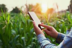 economia sistema de gestão rural