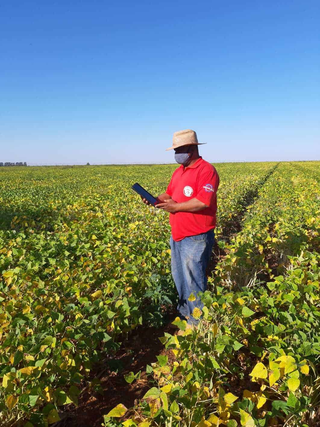 A imagem mostra funcionário da fazenda Shangri-lá  no meio do campo, com um chapéu, máscara e com um tablet em mãos.
