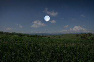 a imagem mostra uma lavoura à noite, e uma lua cheia no centro