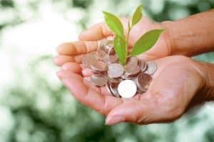 mãos em primeiro plano e juntas, segurando um monte de moedas com uma planta saindo delas. No fundo, uma paisagem verde.