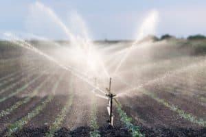 plantação de soja sendo irrigada. Imagem mostra em primeiro plano um sistema de irrigação.